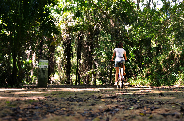 Alugue uma bicicleta e saia pedalando