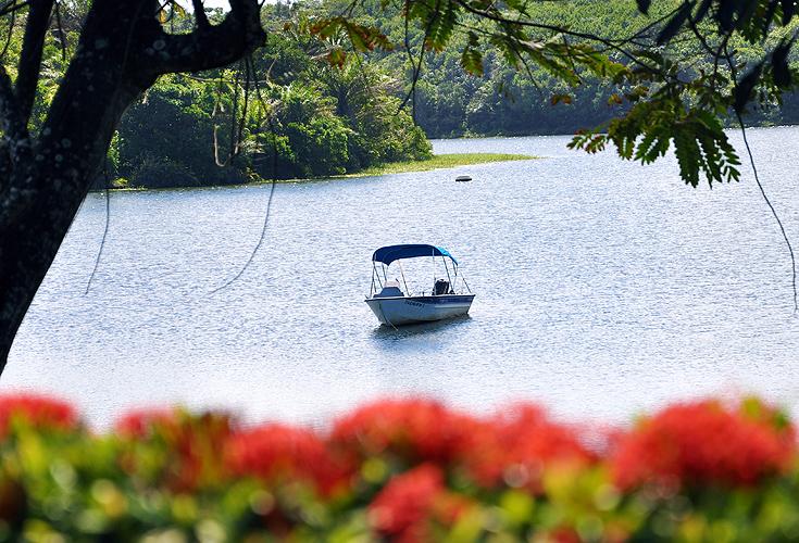Paisagem tranquila da lagoa